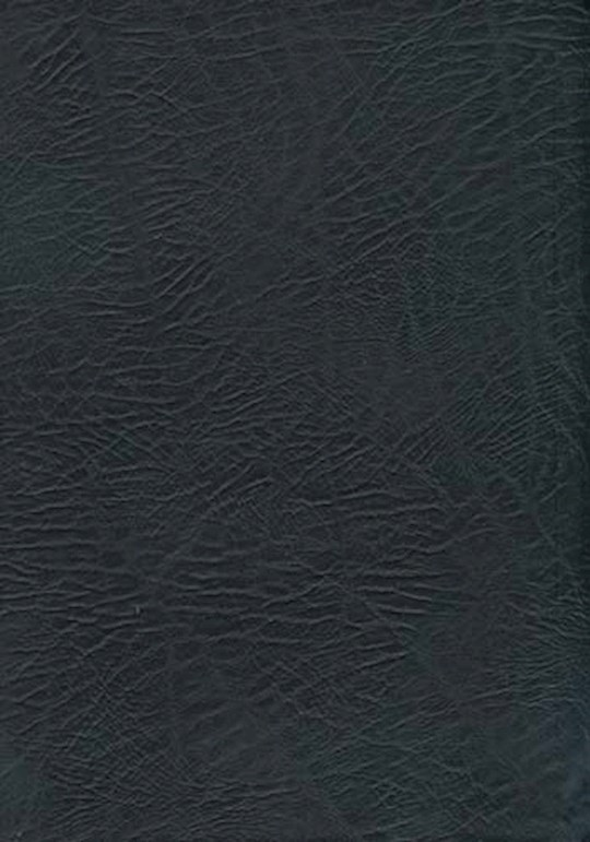 NASB MacArthur Study Bible/Large Print-Black Bonded Leather Indexed | SHOPtheWORD