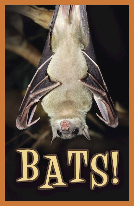 Tract-Halloween: Bats! (KJV) (Pack Of 25) by News Tracts Good | SHOPtheWORD