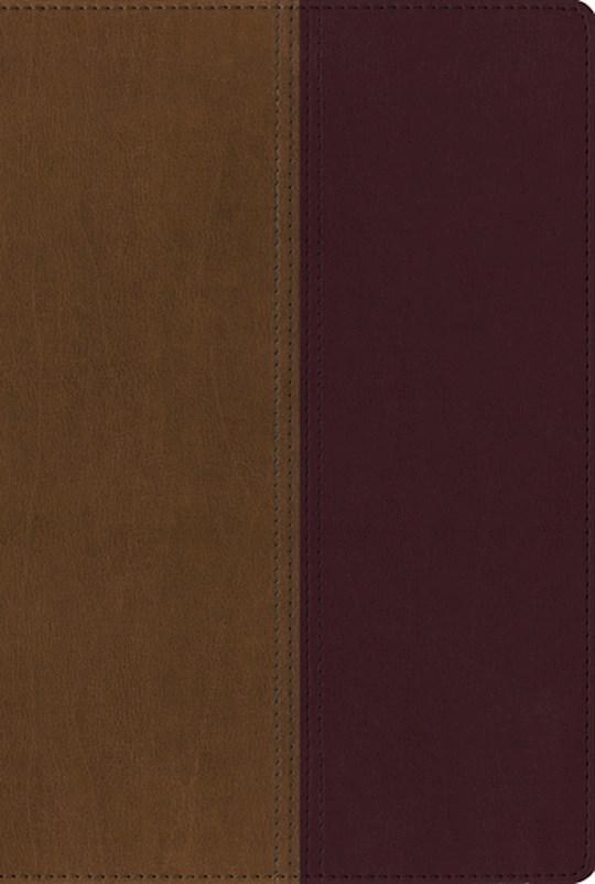 NIV & KJV Side-By-Side Bible-Tan/Cherry Duo-Tone | SHOPtheWORD