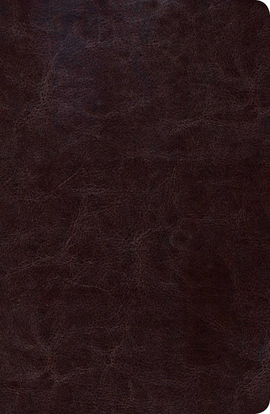 Span-RVR 1960 New Scofield Study Bible/Personal Size-Brown LeatherTouch | SHOPtheWORD