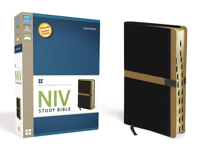 NIV Study Bible/Large Print-Black/Caramel Duo-Tone Indexed | SHOPtheWORD