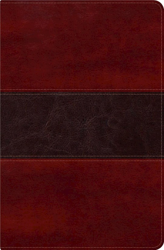 Span-RVR 1960 Fisher Of Men Bible-Mahogany LeatherTouch | SHOPtheWORD