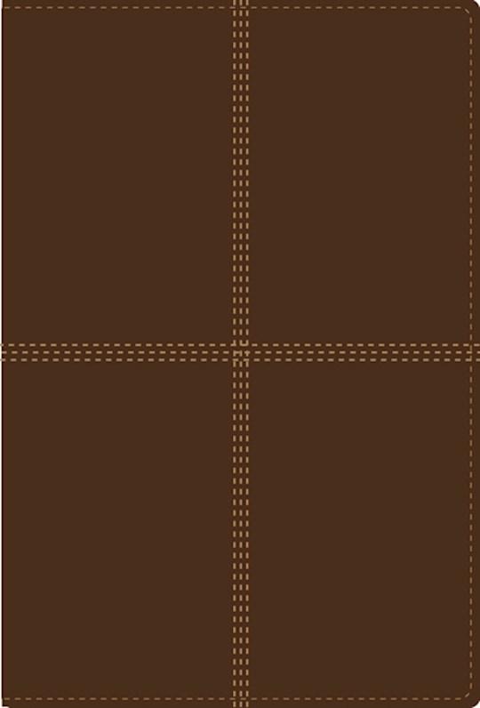 Span-RVR 1960/NIV*Bilingual Bible-Tan DuoTone  | SHOPtheWORD