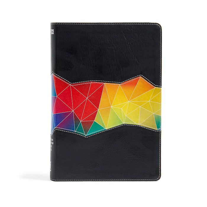 NIV Holman Rainbow Study Bible-Kaleidoscope Black Leathertouch Indexed | SHOPtheWORD