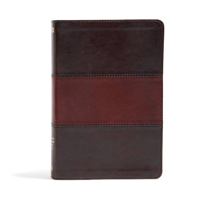 NIV Holman Rainbow Study Bible-Saddle Brown Leathertouch | SHOPtheWORD