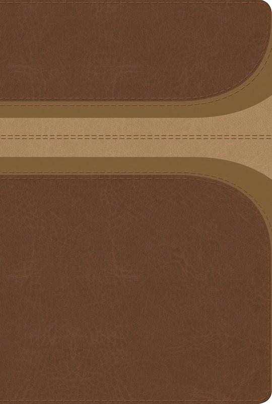 Span-RVR 1960 Rainbow Study Bible (Biblia de Estudio Acro Iris)-Brown/Tan LeatherTouch Indexed  | SHOPtheWORD