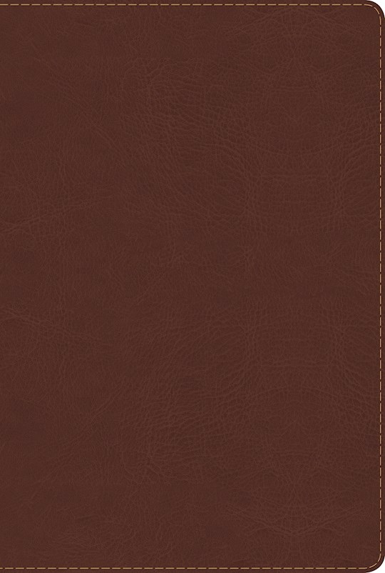 Span-RVR 1960 Rainbow Study Bible (Full Color)-Brown LeatherTouch  | SHOPtheWORD