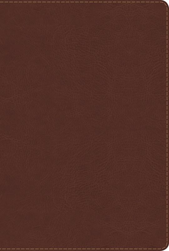 Span-RVR 1960 Rainbow Study Bible (Biblia de Estudio Acro Iris)-Brown LeatherTouch  | SHOPtheWORD