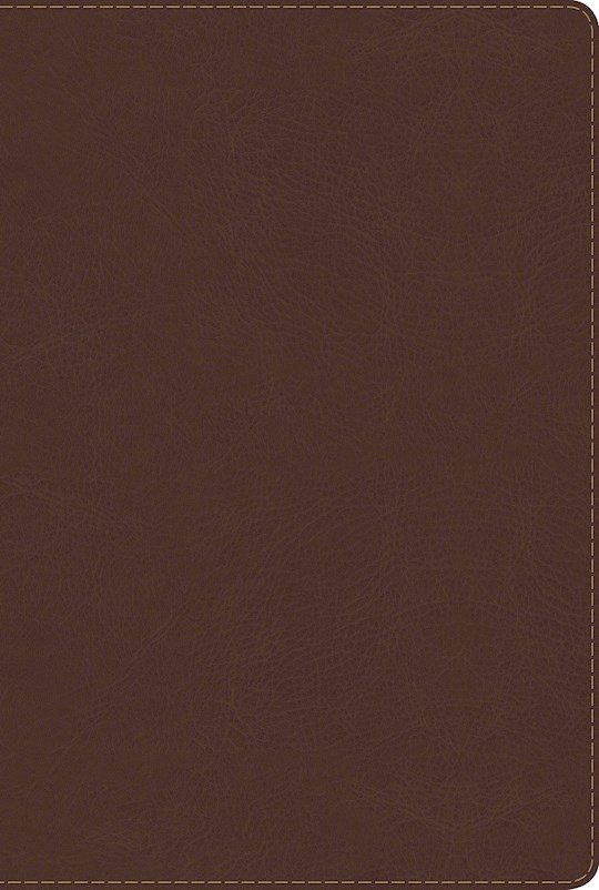 Span-RVR 1960 Rainbow Study Bible (Full Color)-Brown LeatherTouch Indexed  | SHOPtheWORD
