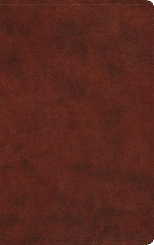 ESV Large Print Value Thinline Bible-Chestnut TruTone | SHOPtheWORD