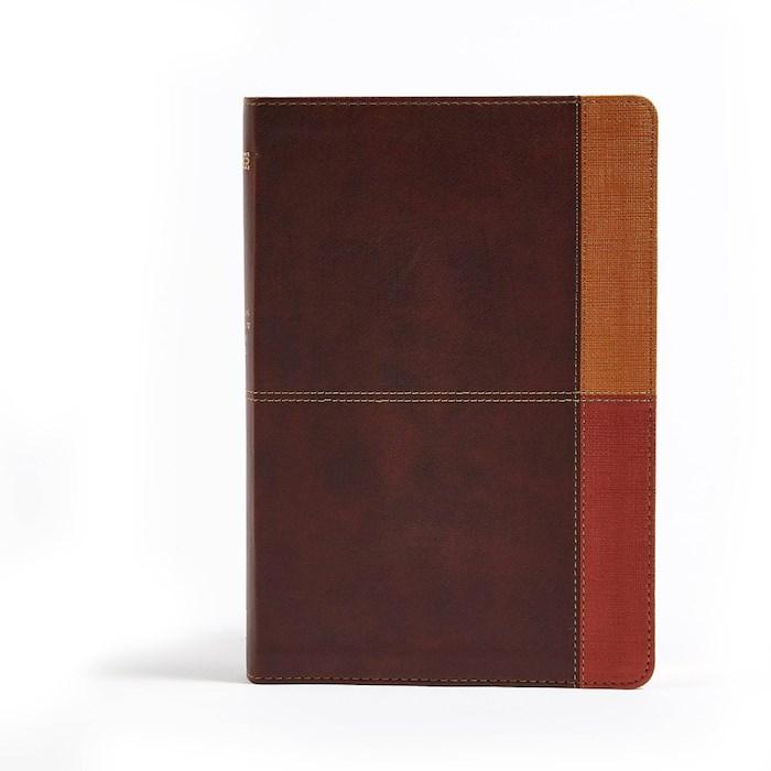 NIV Holman Rainbow Study Bible-Cocoa/Terra Cotta/Ochre Leathertouch | SHOPtheWORD