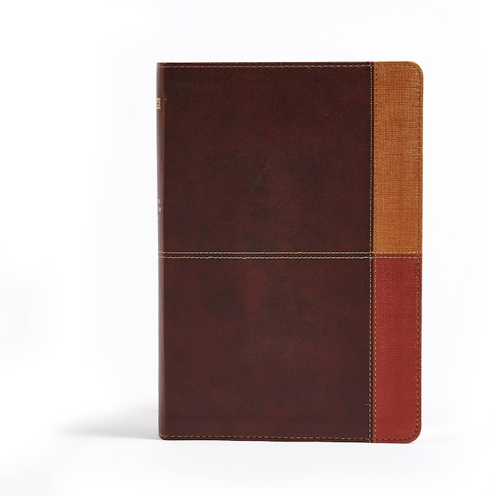 NIV Holman Rainbow Study Bible-Cocoa/Terra Cotta/Ochre Leathertouch Indexed | SHOPtheWORD