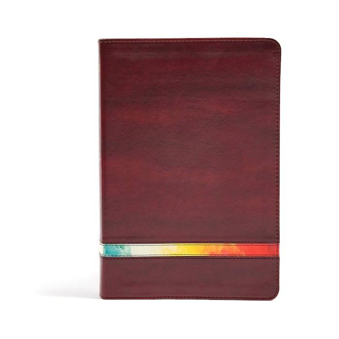 NIV Holman Rainbow Study Bible-Maroon Leathertouch | SHOPtheWORD