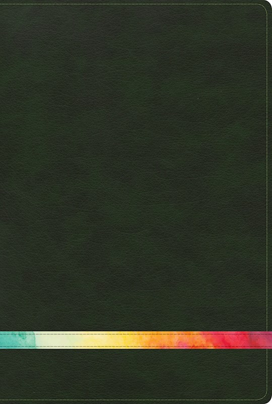 Span-RVR 1960 Rainbow Study Bible-Deep Green/Multicolor LeatherTouch Indexed | SHOPtheWORD