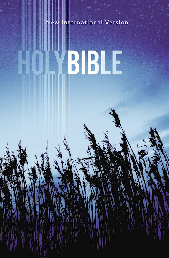 NIV Value Outreach Bible-Blue Wheat Softcover | SHOPtheWORD