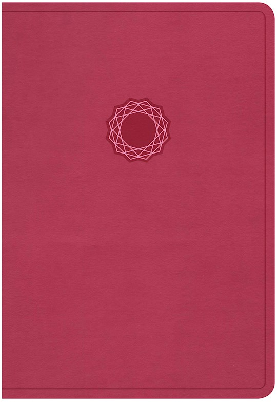 KJV Deluxe Gift Bible-Pink/Light Pink LeatherTouch | SHOPtheWORD