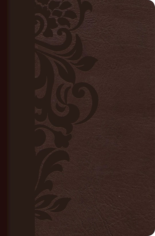 Span-RVR 1960 Study Bible For Women-Brown LeatherTouch Indexed | SHOPtheWORD