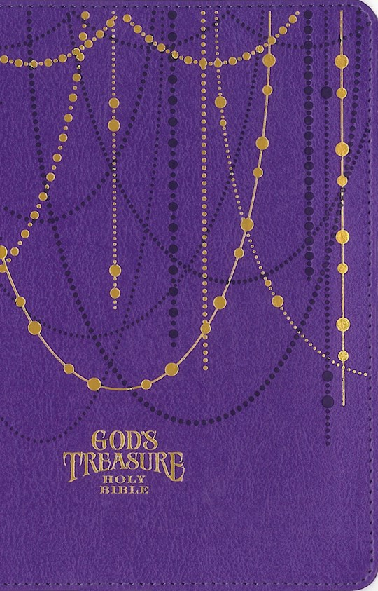NIV God's Treasure Holy Bible-Amethyst Leathersoft | SHOPtheWORD