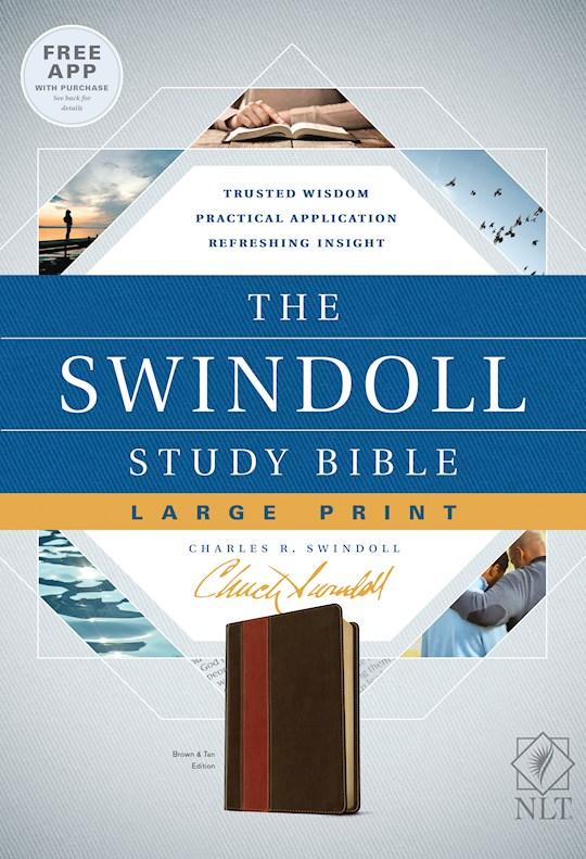 NLT Swindoll Study Bible/Large Print-Brown/Tan LeatherLike | SHOPtheWORD