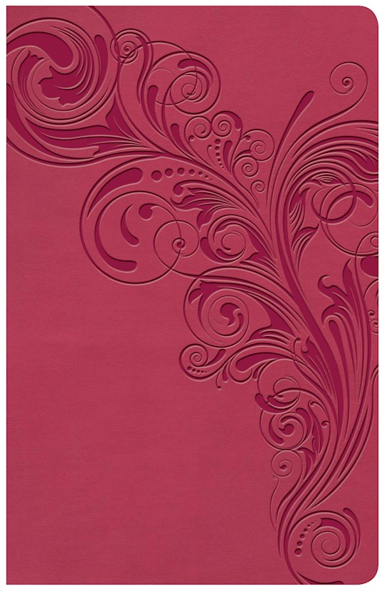 KJV Large Print Personal Size Reference Bible-Pink LeatherTouch Indexed   SHOPtheWORD