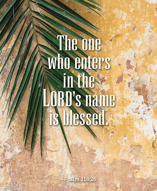 Bulletin-Palm Sunday-The One Who Enters (Psalm 118:26)-Legal Size (Pack Of 50)  | SHOPtheWORD