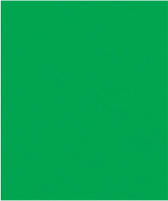Multi Event Crepe Paper-Dark Green (Pack Of 10)  | SHOPtheWORD