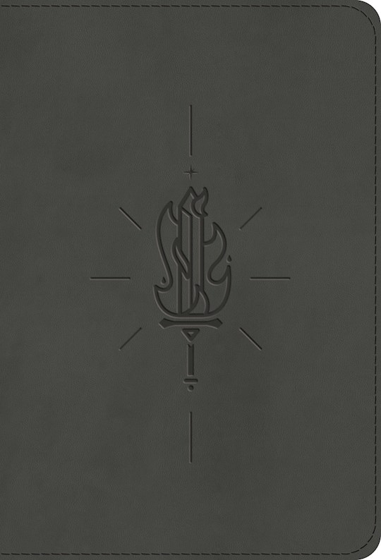 ESV Kid's Compact Bible-Gray Sword Of The Spirit Design TruTone | SHOPtheWORD