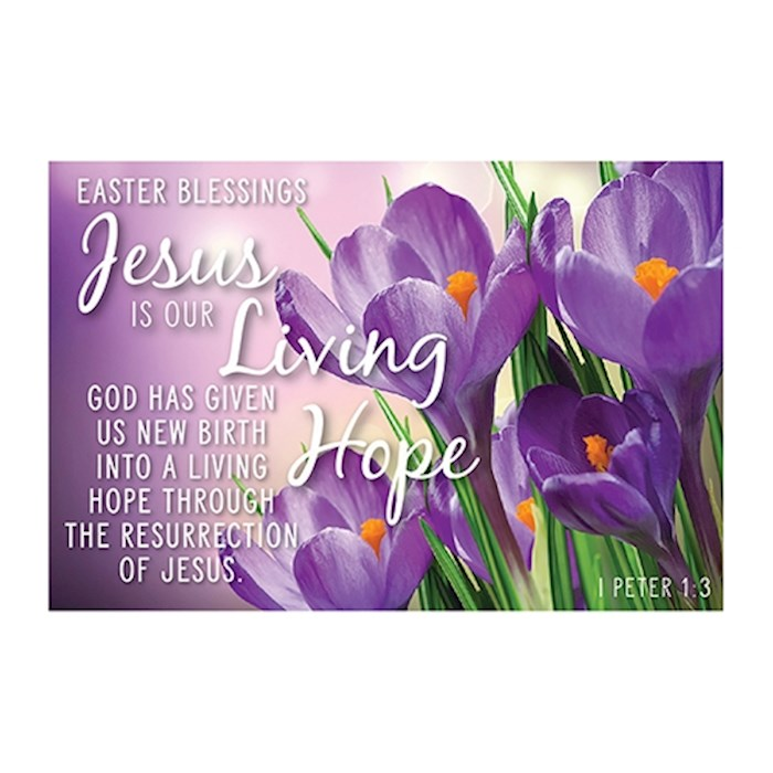 "Cards-Pass It On-Jesus Is Our Living Hope/Purple Floral (3"" x 2"") (Pack Of 25) 