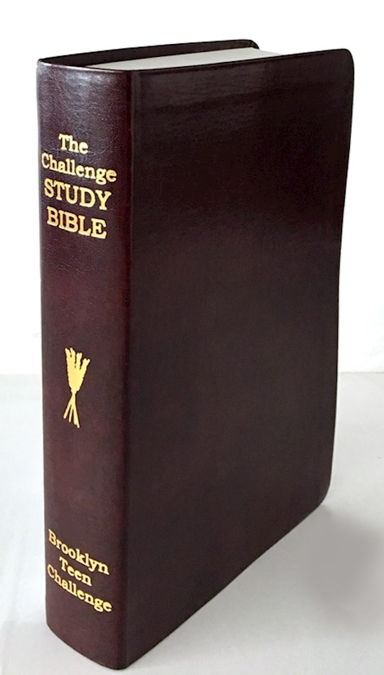 CEV Challenge Study Bible-Flexi Cover (New) | SHOPtheWORD