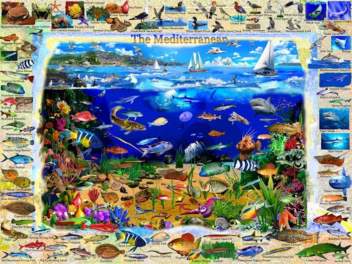 Jigsaw Puzzle-The Mediterranean (550 Pieces) | SHOPtheWORD