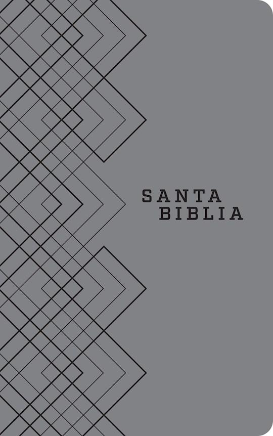 Span-NTV Holy Bible, Agape Edition (Santa Biblia, Edicion Agape)-Gray LeatherLike | SHOPtheWORD