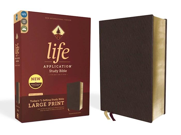 NIV Life Application Study Bible/Large Print (Third Edition)-Burgundy Bonded Leather | SHOPtheWORD
