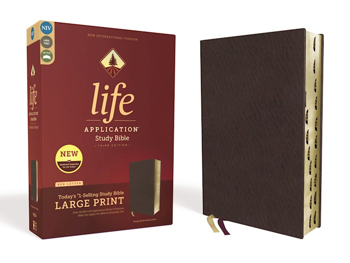 NIV Life Application Study Bible/Large Print (Third Edition)-Burgundy Bonded Leather Indexed | SHOPtheWORD