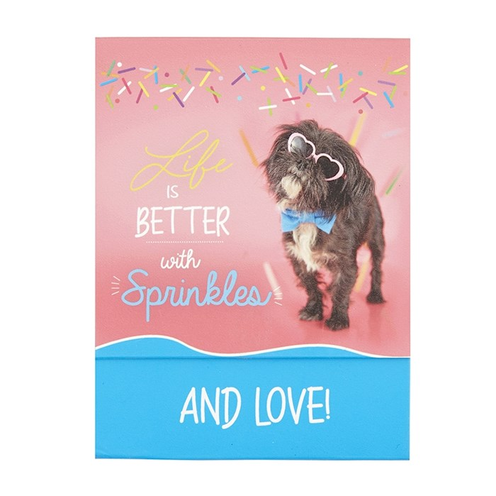 "Pocket Notepad-Better With Sprinkles (3"" x 3.85"") 