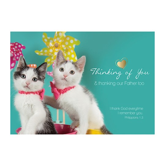 """Postcard-Thinking Of You (6"""" x 4.25"""") (Pack Of 6)   SHOPtheWORD"""