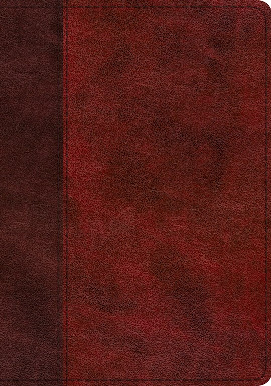 ESV Study Bible-Burgundy/Red, Timeless Design TruTone Indexed | SHOPtheWORD