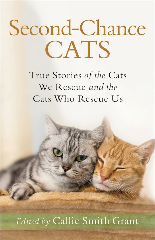 Second-Chance Cats by Callie Smith Grant | SHOPtheWORD