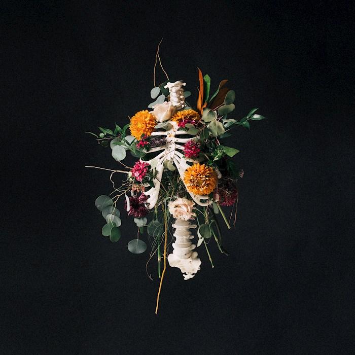 Audio CD-Graves Into Gardens | SHOPtheWORD