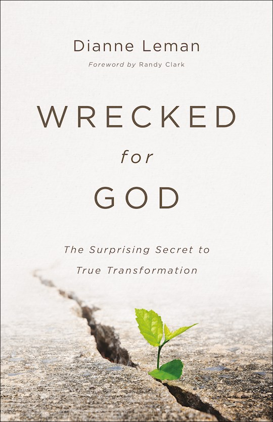 Wrecked For God by Dianne Leman | SHOPtheWORD